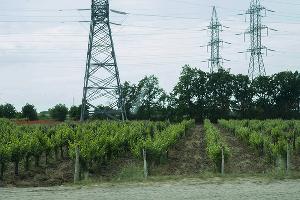 Местный колорит ©Фото Евгения Мельченко, Юга.ру