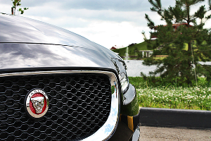 Jaguar XE. Компактный британский кот с резвым нравом ©Фото ЮГА.ру