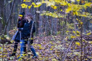 Skoda попала #точновяблочко ©Фото Евгения Мельченко, Юга.ру