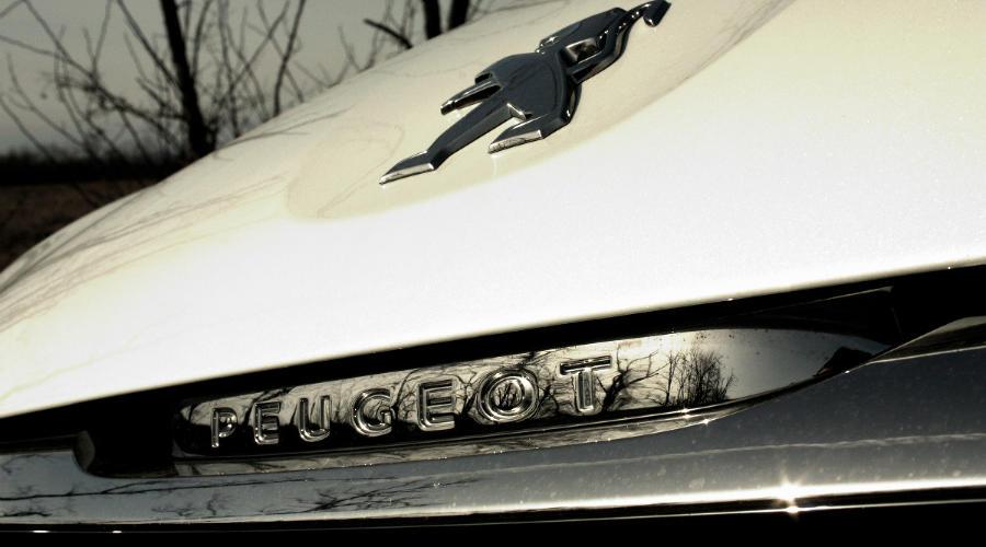 Автомобили Peugeot ©Фото Евгения Мельченко, Юга.ру