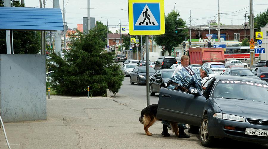 Обыск подозрительного автомобиля производит кинолог с подопечным псом