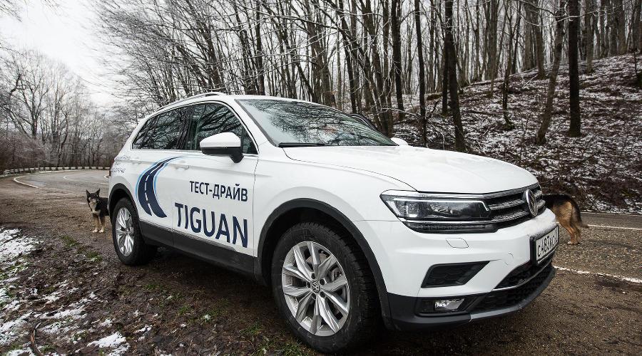 Volkswagen Tiguan ©Фото Елены Синеок, Юга.ру