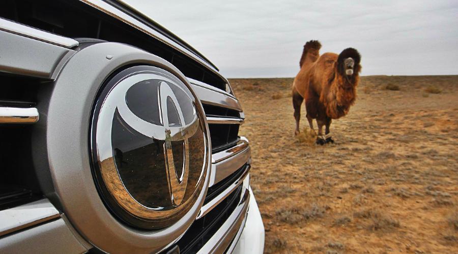 Toyota ©Фото Евгения Мельченко, Юга.ру